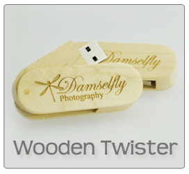 Wooden Twister USB